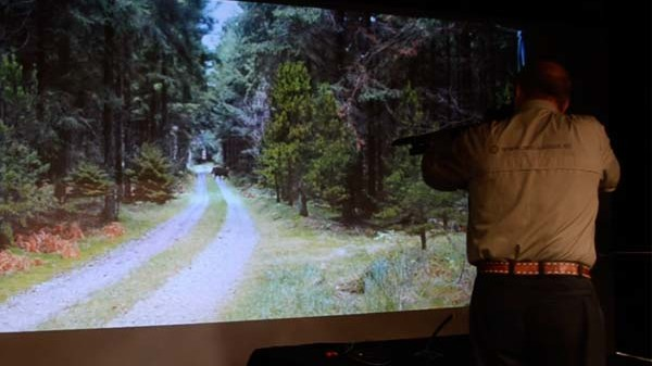 chasse sanglier simulatir64